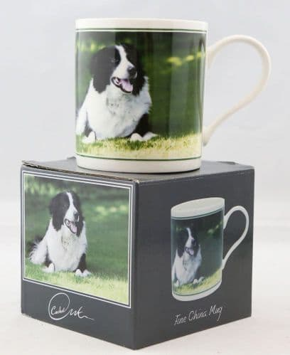 Collie Sheep Dog Mug  Boxed