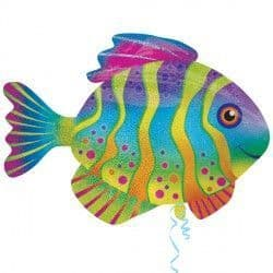 Colourful Fish Holographic Supershape