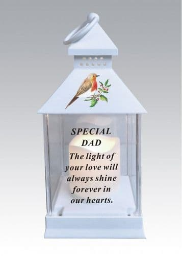 Dad battery operated robin lantern with timer and waterproof battery cover..