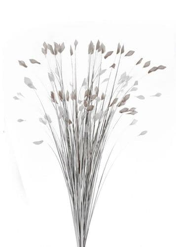 DF19317-C Silver Grass With Grey/White Tips 85cm