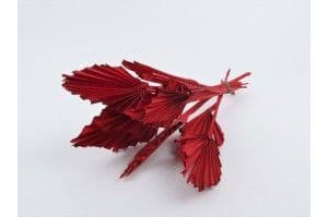 DRIED MINI PALM SPEAR RED bouquet of 10 leafs