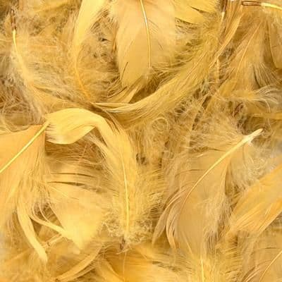 """Eleganza Feathers Mixed sizes 3""""-5"""" 50g bag Gold No.35"""