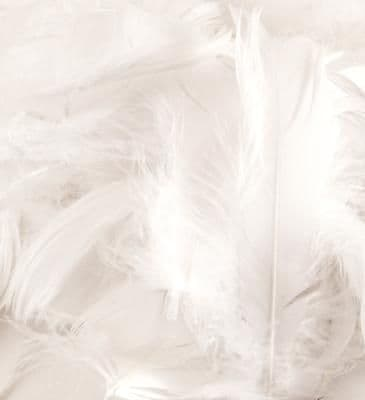 Eleganza Feathers Mixed sizes 3inch-5inch 50g bag White No.01