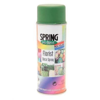 Green Olive Euro-Aerosols Spray Paint *Not available for shipping to NI