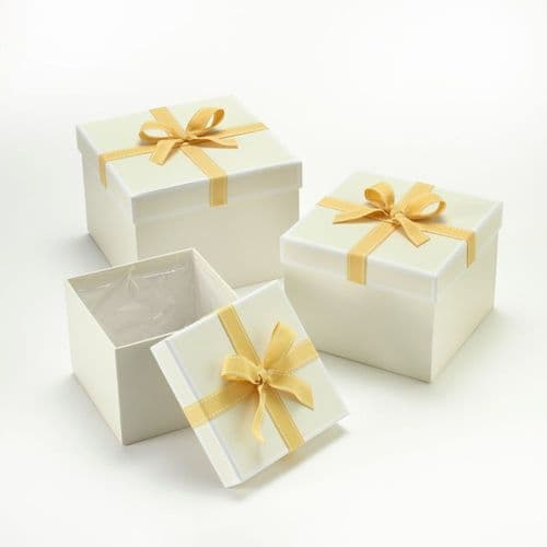 SQUARE STEPHY HAT BOXES X3 LND 41-01124