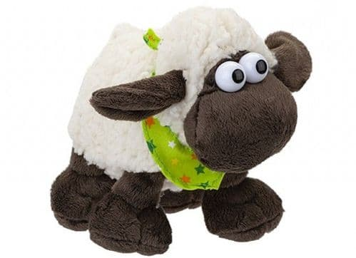 Woolly Sheep With Comical Eyes